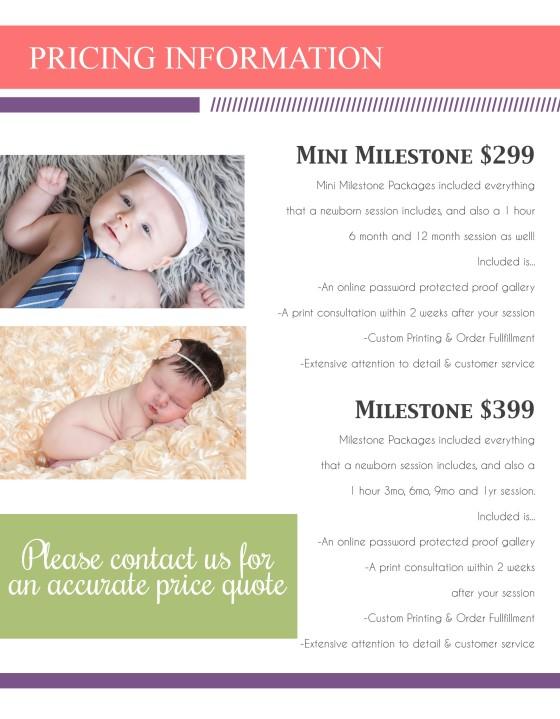 3-PricingMilestone